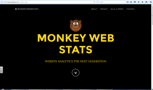 monkeywebstats landing page further visits